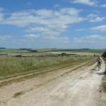 ridgeway 019