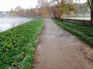 petersham meadow repaired Dec 14